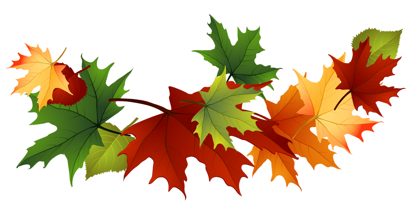 Fall-leaves-fall-clip-art-autumn-clip-art-leaves-clip-art-clipart-3.png